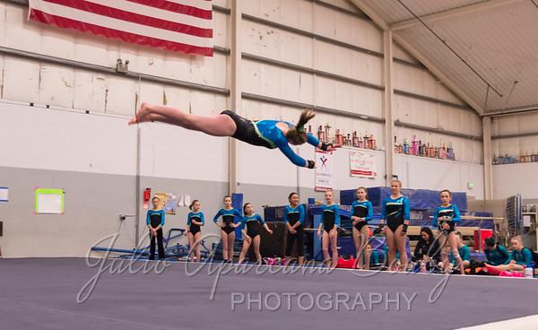 Gymnastics Plus - 1105