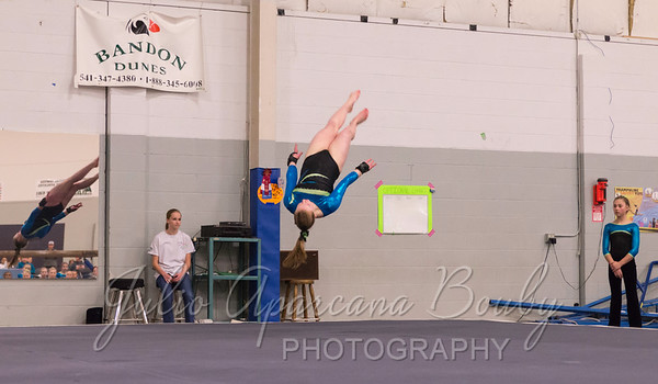 Gymnastics Plus - 1113