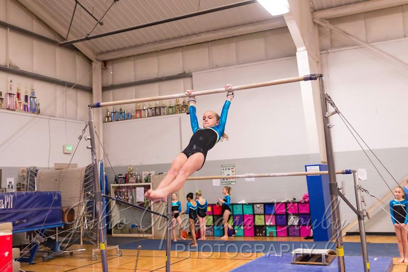 Gymnastics Plus - 0099