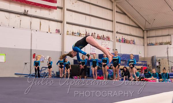 Gymnastics Plus - 1107