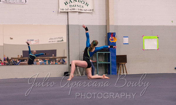 Gymnastics Plus - 1120