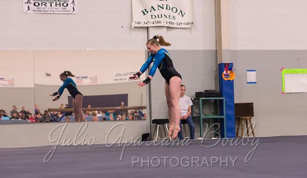 Gymnastics Plus - 1119