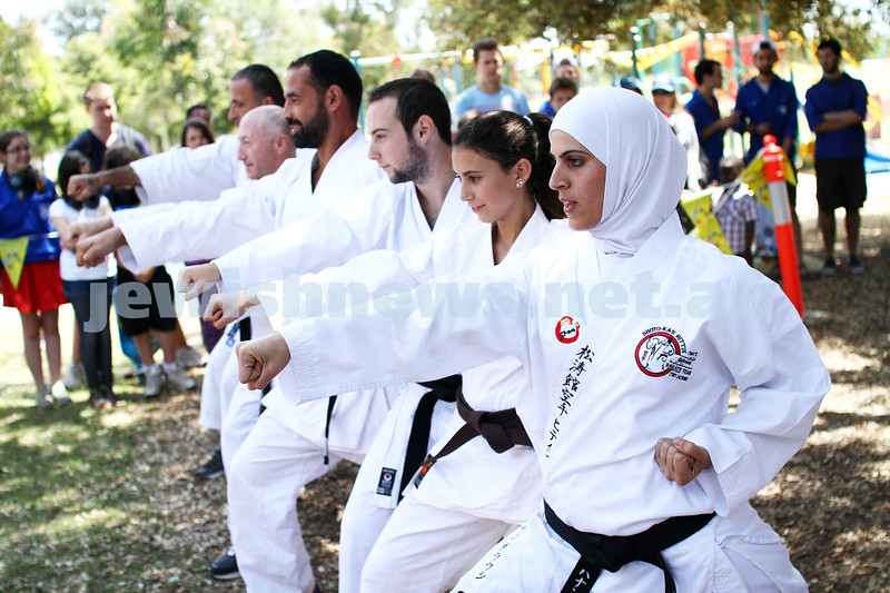 25-11-12. Mitzvah Day 2012. Budo for Peace demonstrate their skills at the jewish Aide BBQ at Caulfield Park.  Photo: Peter Haskin