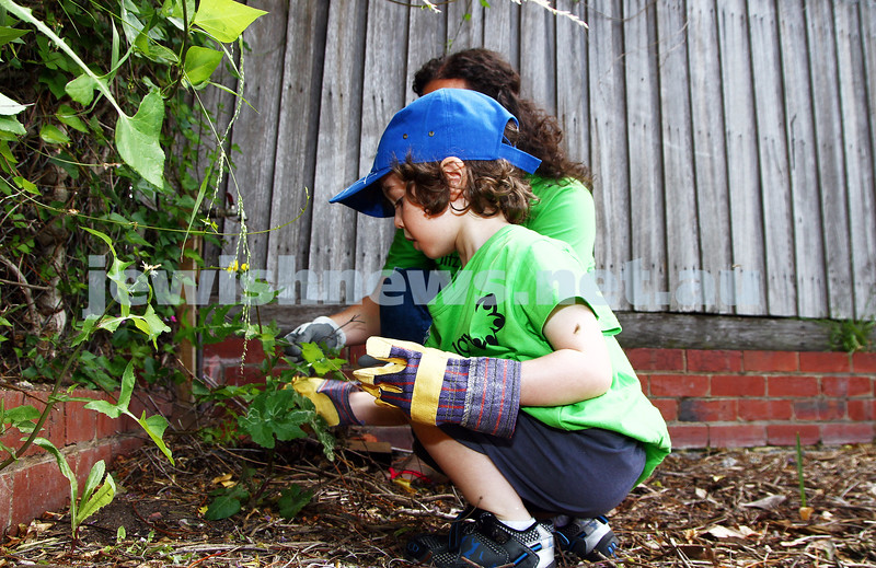 17-11-13. Mitzvah Day 2013. Green Projects cleaning up the garden at Yooralla in Murrumbeena.  Photo: Peter Haskin