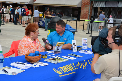 NAMI of Lehigh Valley at the Iron Pigs, June 28, 2015
