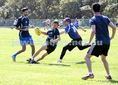 NSW Maccabi Touch Football. 12-10-14