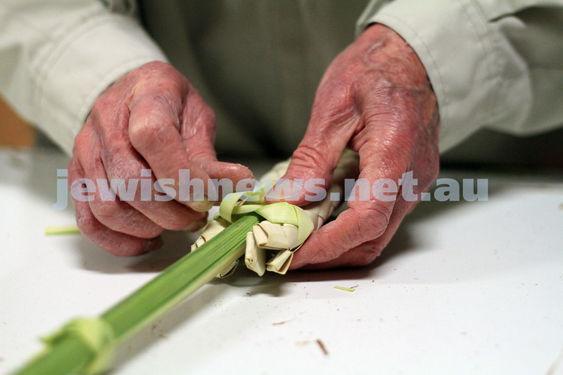 Succot 2010.  Buying Lulav at Mizrachi. Photo: Peter Haskin