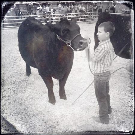 01 Kids Fair Day 3.jpg