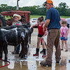 The Hines family from Royal Center believes that the family that bathes their cows together will always stay together as they clean up their entries in the Cass County Fair. Fran Ruchalski | Pharos-Tribune