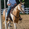 Emilia Rozzi, 11, and her horse Nova navigate the poles competition in the horse and pony competition on Monday night at the Cass County Fair. Fran Ruchalski | Pharos-Tribune
