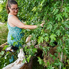 Erica Hopkins pulls down a tree branch for her goats to eat at Twin Willows farm in Logansport on Friday, July 23, 2021.
