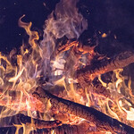 Campfire for ISIMen at David Adam's farm in Holly Springs