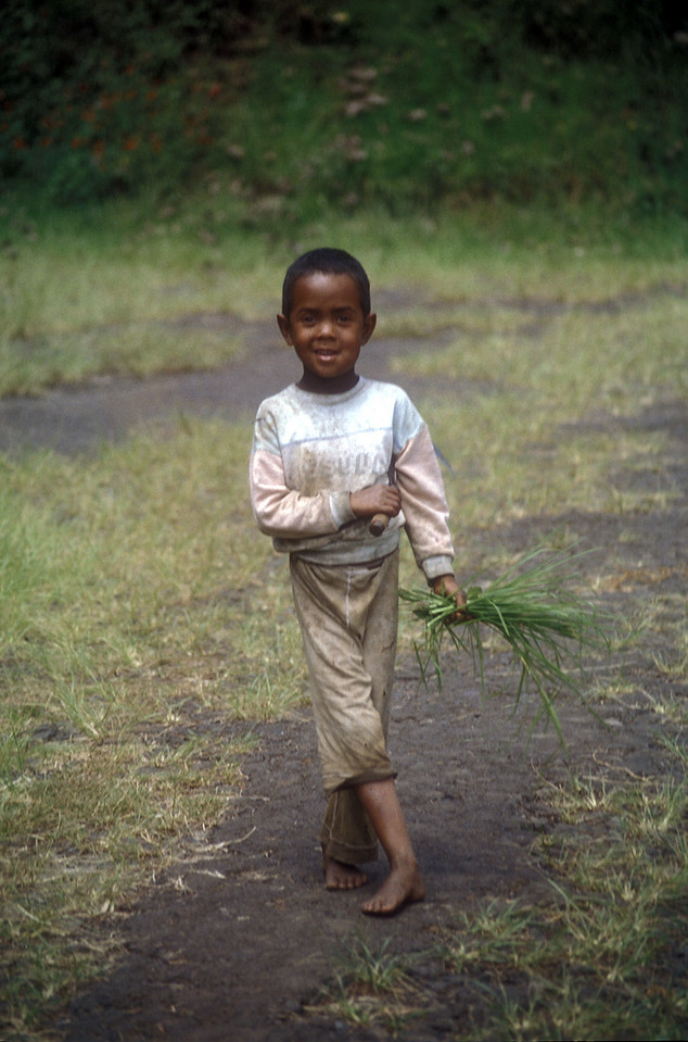 This boy was out collecting these grasses around the lake. He came to see the foreigners.
