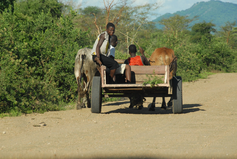 Traffic on the road to Monkey Bay, Malawi.