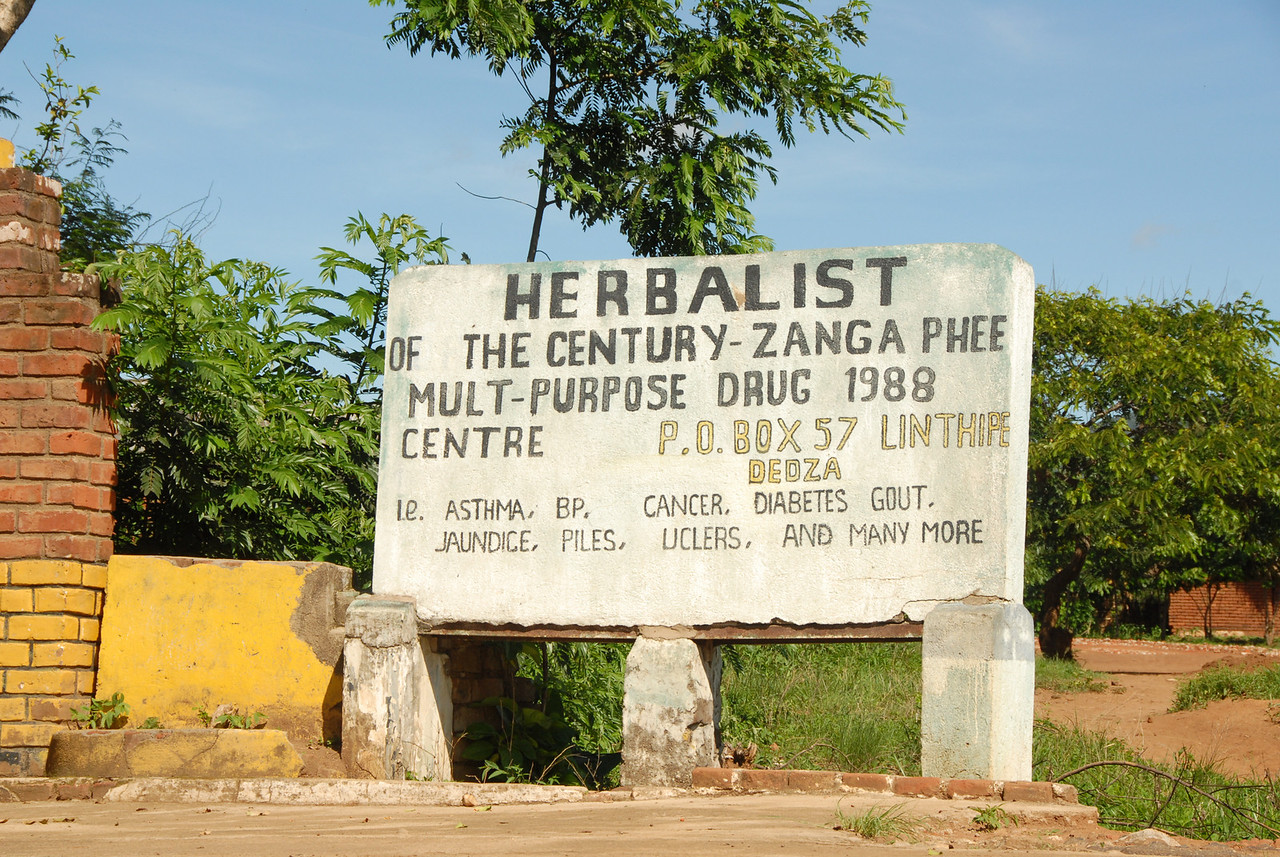 Zanga Phee, the Herbalist of the century, on the drive out to Monkey Bay. Driving by Zanga Phee's place, Everlasting made this point: At the regular hospital they had nothing. They got aspirin. But they had aspirin at home! So they'd go to a traditional healer to at least get something.