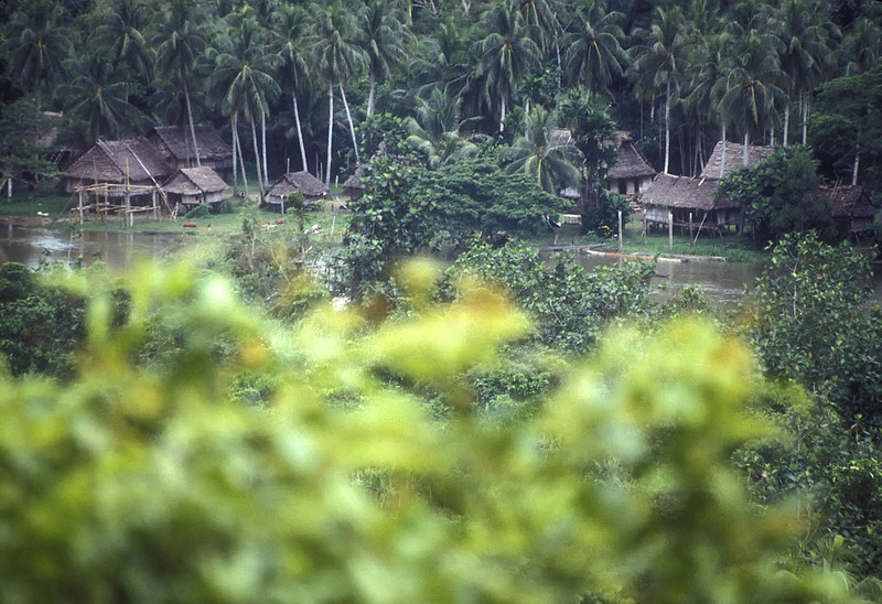 Here's a typical village along the Sepik River.