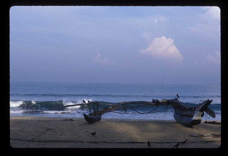 An outrigger on Negombo beach, Sri Lanka.