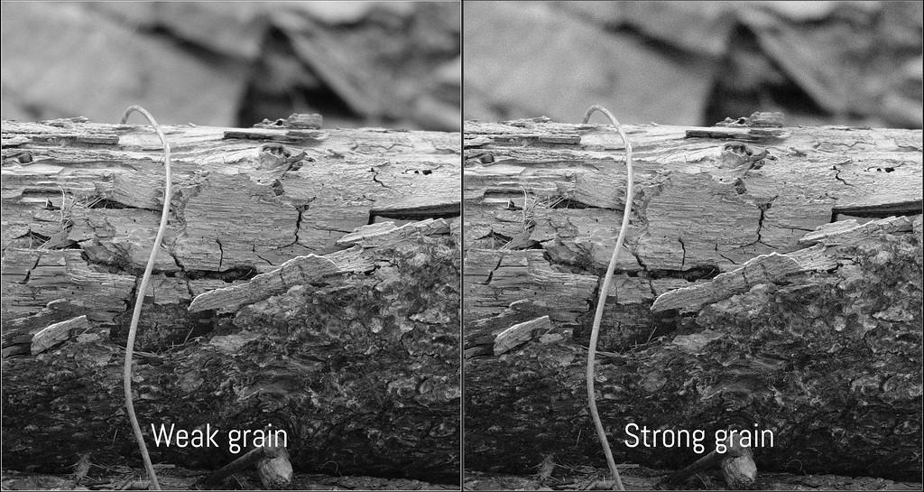 fuji x-pro2 grain effect