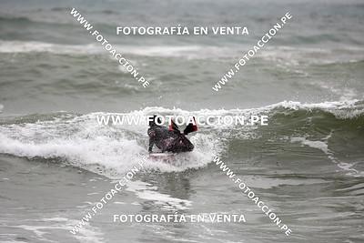 AUGUSTO FRANCIA