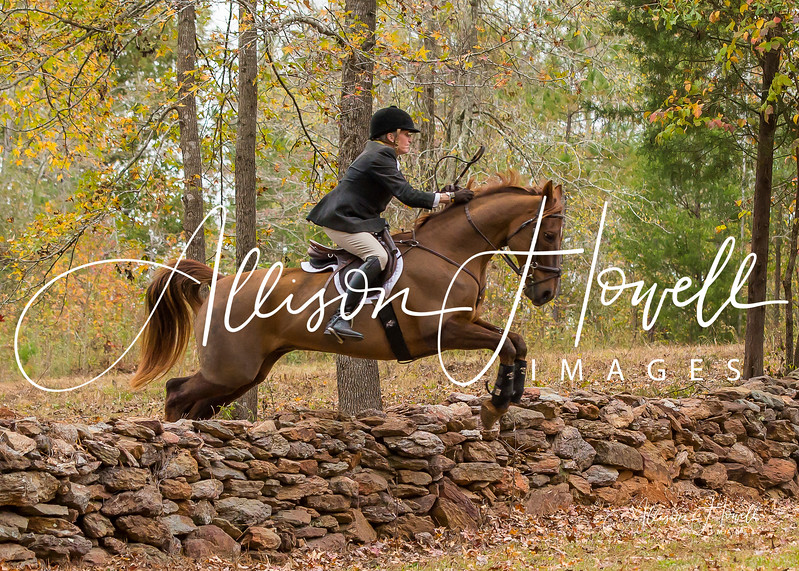 Cheryl over stone wall A2017