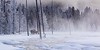 Cold Morning By Nancy Varga