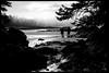 """Chesterman Beach"" - A couple on a morning walk on Chesterman Beach, Tofino, BC"