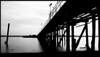 """Marina Beach Park Pier"""