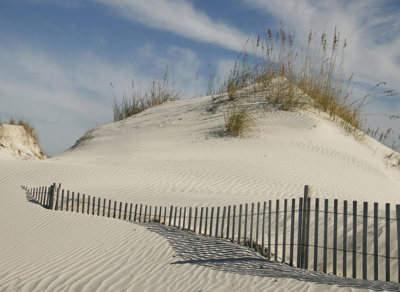 Blue Ribbon<br /> Advanced Color Class<br /> Dunes and Fence<br /> Len Messineo