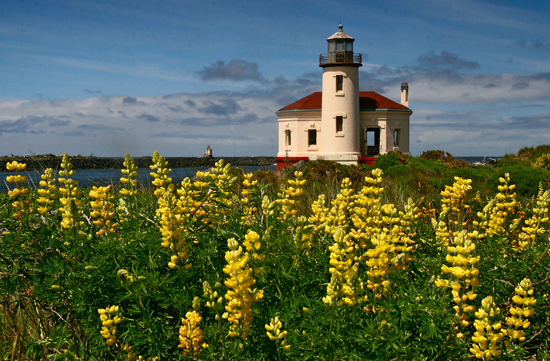 Yellow Ribbon<br /> Advanced Color Class<br /> Oregon Lighthouse<br /> Janet Bigalke
