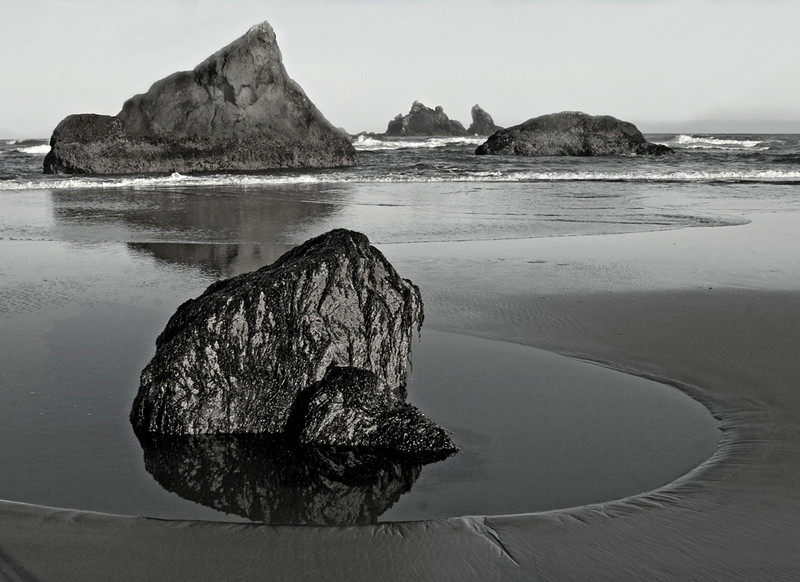 Blue Ribbon<br /> Advanced Mono Class<br /> Oregon Coast<br /> Janet Bigalke