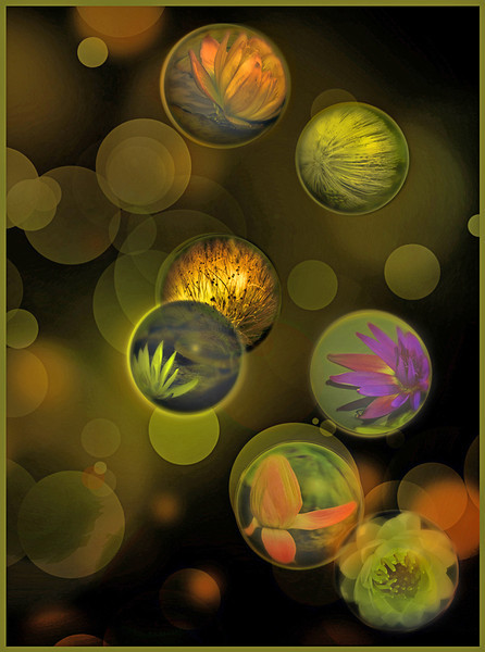 Blue Ribbon<br /> Advanced Color Class<br /> Bokeh Bubbles<br /> Nancy Springer