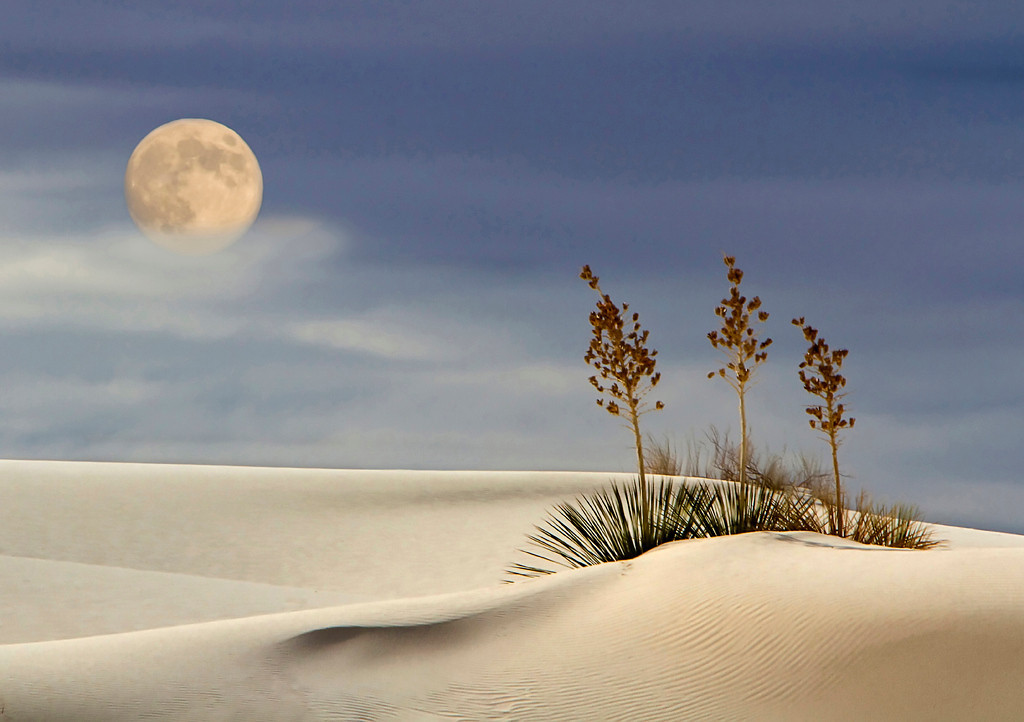 Blue Ribbon<br /> Advanced Color Class<br /> Moon Over White Sands<br /> Liz Keery