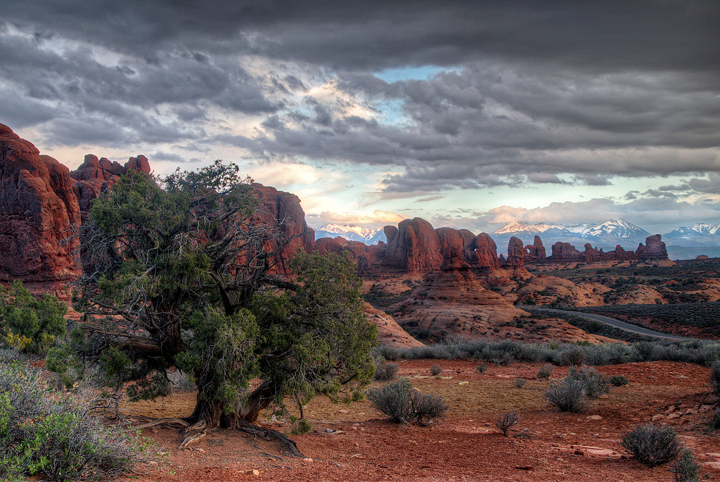 Digital Competition<br /> Yellow Ribbon<br /> Advanced Color Class<br /> Storm in the Arches<br /> Mike Landwehr