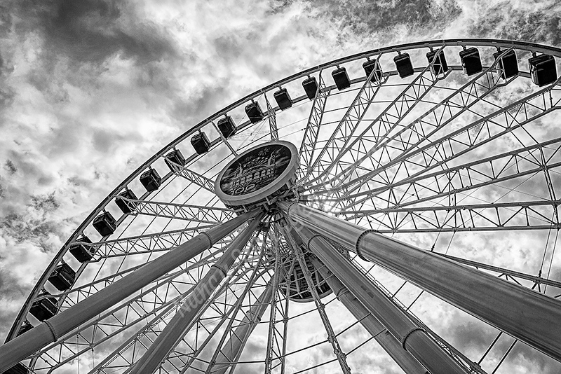 Digital Competition<br /> Blue Ribbon<br /> Advanced Mono Class<br /> Navy Pier Ferris Wheel<br /> Nancy Springer