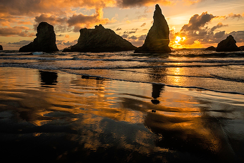 Digital Competition<br /> Yellow Ribbon<br /> Advanced Color Competition<br /> Sea Stacks Sunset<br /> Nancy Springer