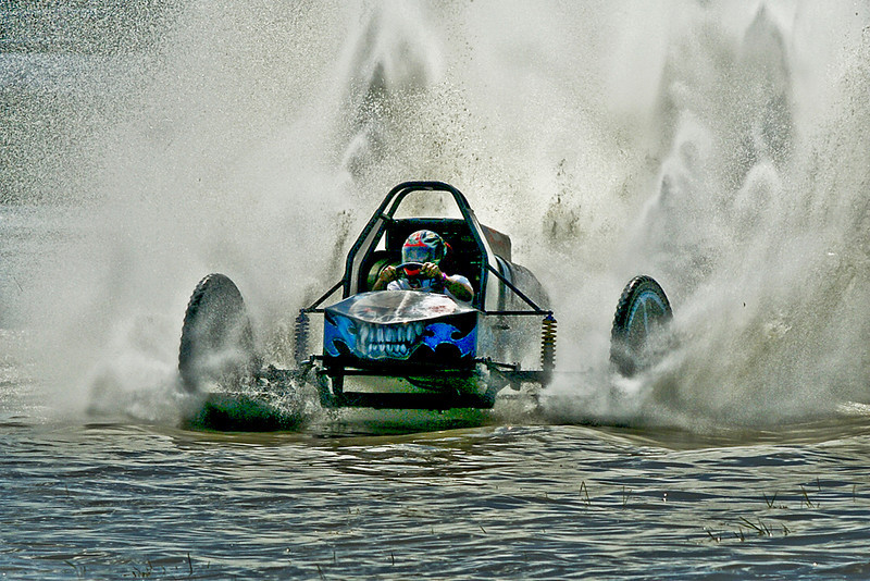 Second Place<br /> Swamp Buggy Curve<br /> Nancy Springer