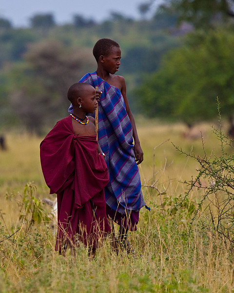 Honorable Mention<br /> Maasai Herders<br /> Carol Williamson