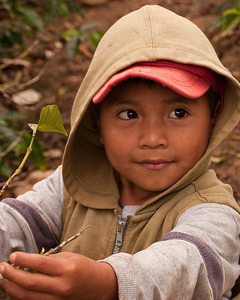 Third Place (Tie)<br /> Coffee Picker's Child<br /> Carol Williamson