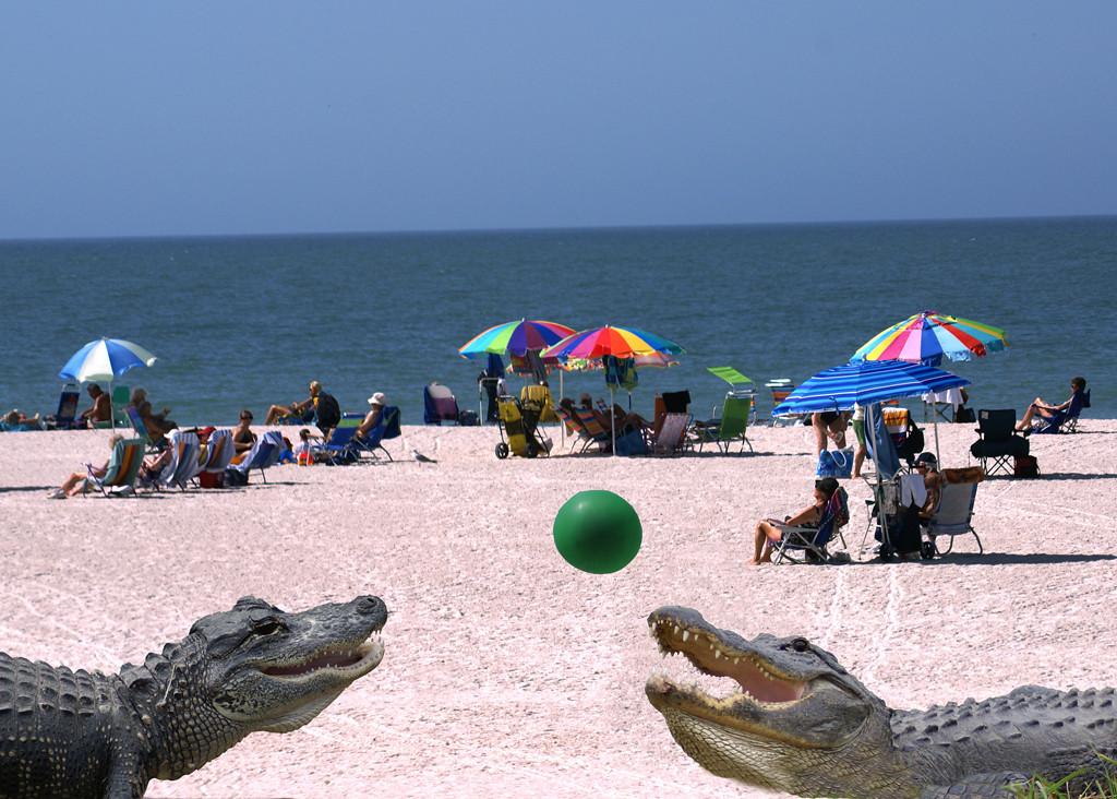 First Place (Tie)<br /> Fun at the Beach<br /> Della Landheer