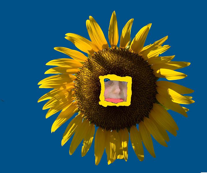 Second Place (Tie)<br /> Flower Girl<br /> Ken Rathjen