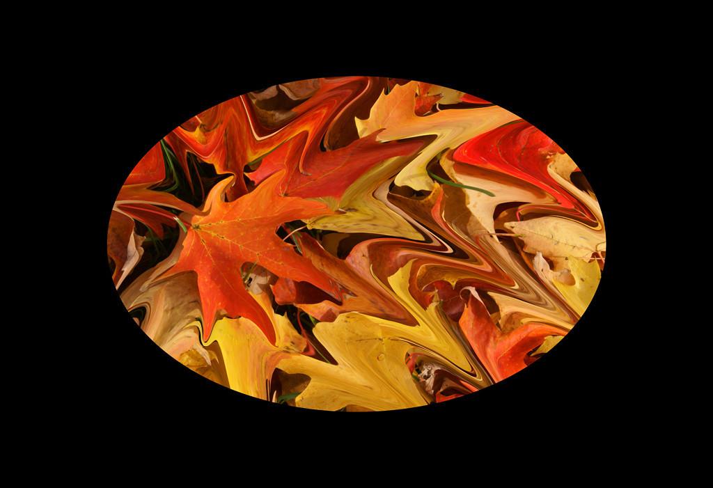 Second Place (Tie)<br /> Maple Leaf in Orange<br /> Della Landheer