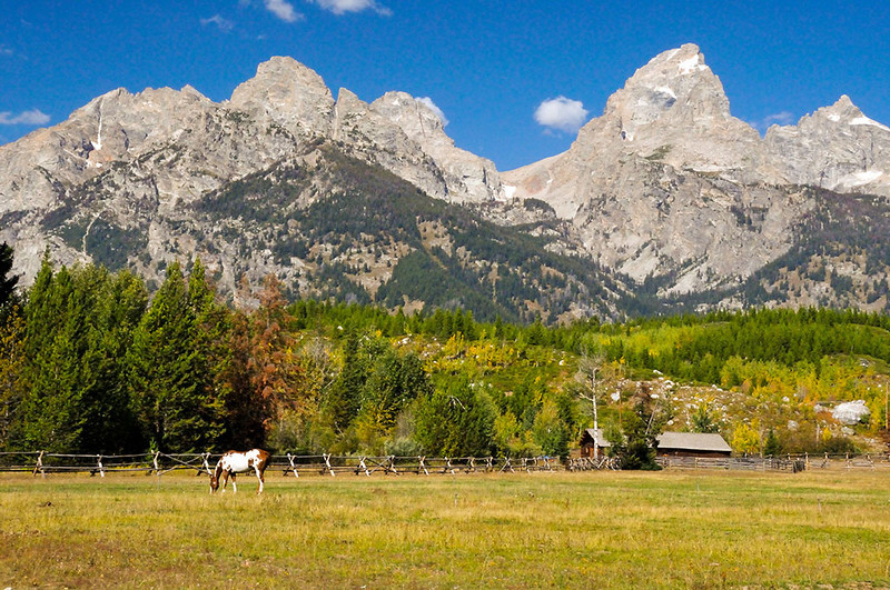 Honorable Mention<br /> Teton Ranch<br /> Dick Walker