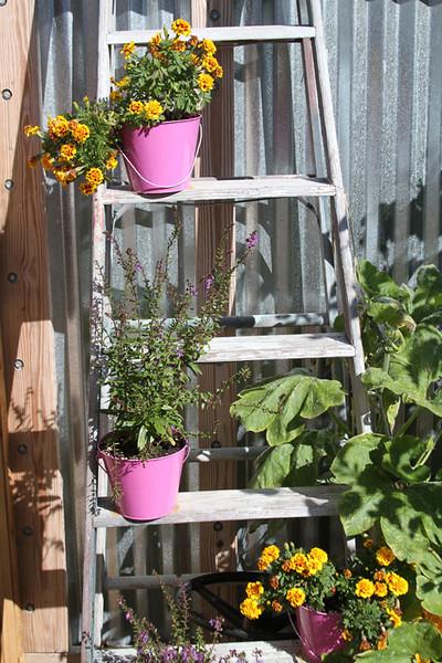 Third Place<br /> Ladder Pots<br /> Jay Feldman