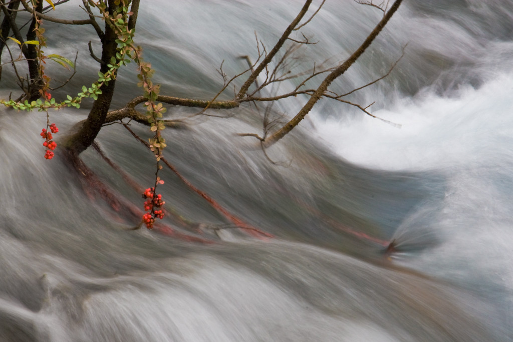 First Place (Tie)<br /> Rushing Water<br /> Carol Williamson