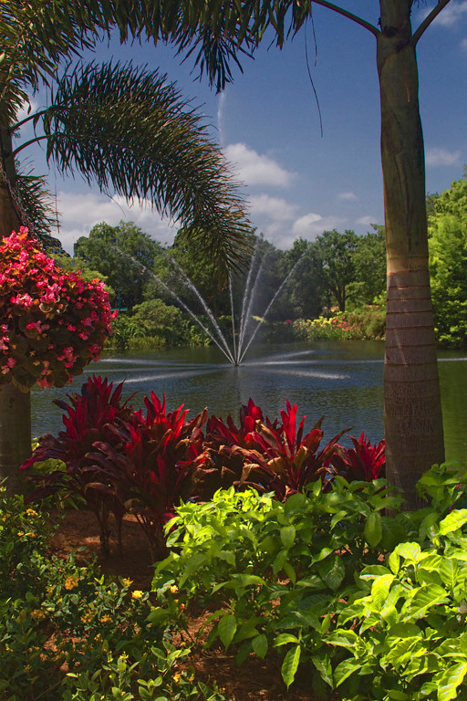 Second Place (Tie)<br /> Sea World Gardens<br /> Jay Feldman