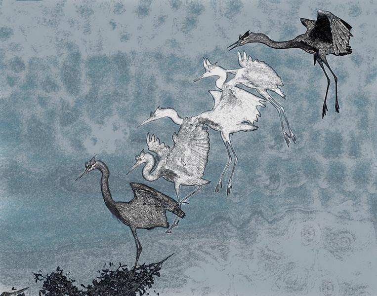 Second Place (Tie)<br /> Stork Landings Colored Pencil Blue<br /> David Garrison
