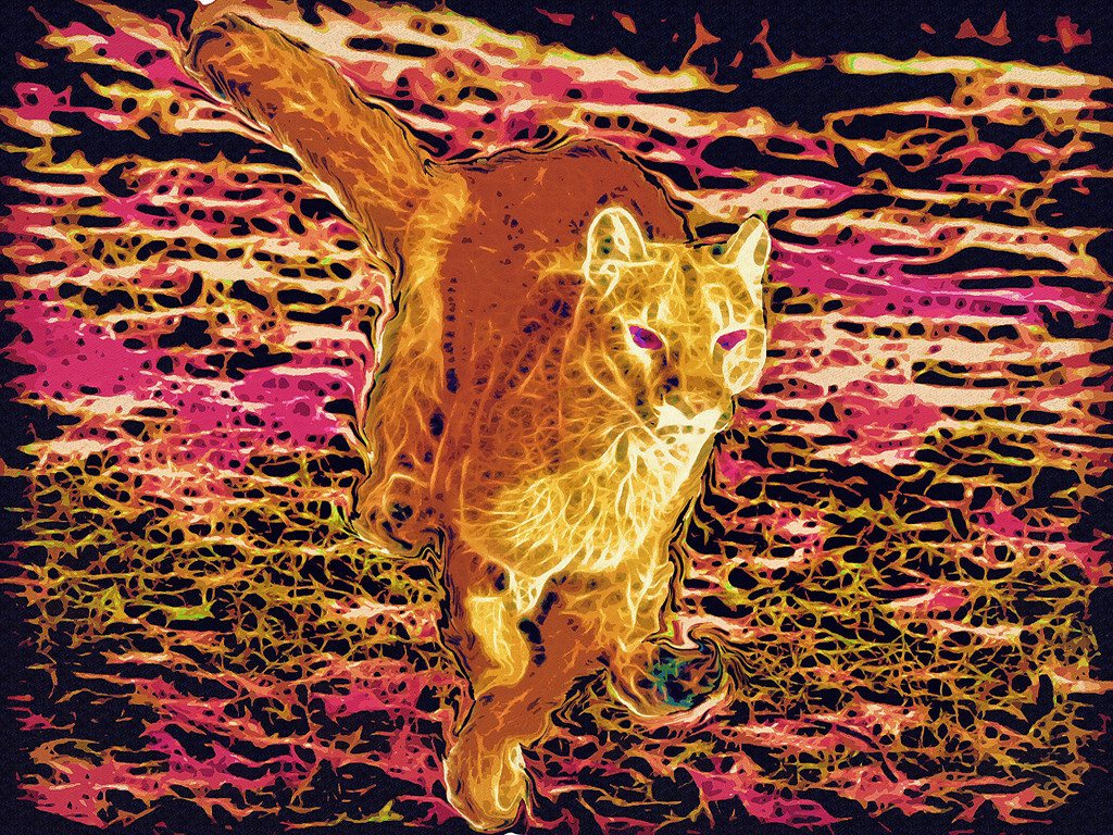 First Place (Tie)<br /> Feline of the Third Kind<br /> Ed Cohen