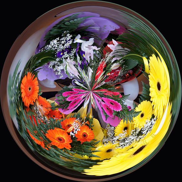 Creative Projection Image of the Year<br /> Flower Sphere<br /> Della Landheer