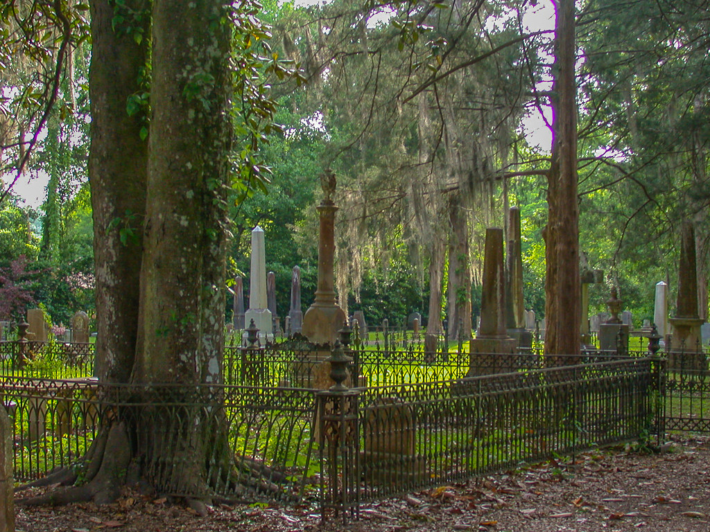 First Place (Tie)<br /> Confederate Cemetery<br /> Dick Walker