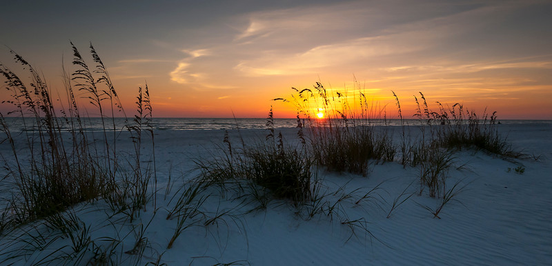 Honorable Mention<br /> Beach Grass Sunset<br /> Kathy Snead